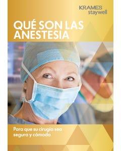 Understanding Anesthesia (Spanish)