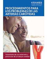 Procedures for Carotid Artery Problems (Spanish)
